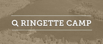 Eagle Lake Ringette Summer Camp Ontario
